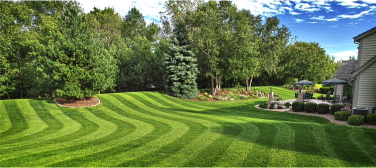 5 Great Reasons to Hire Lawn Care Professionals in Overland Park