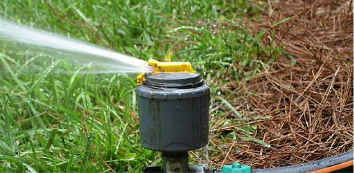 Your Summer Guide to Lawn Care in Overland Park