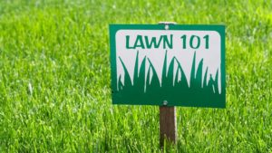 If you are looking at overseeding in Overland Park as a service from us, verticutting is also good preparation for your lawn in that aspect. It relaxes the soil and allows for more nutrients to enter. While you do not have to verticut your lawn, it is crucial to at least understand what it is and how it could benefit your yard.   If you have any interest in verticutting in Overland Park or have any questions, please contact us today for a consultation. You can get ahold of the best lawn care company in Overland Park at 913-485-2423.