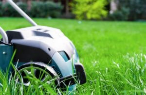 Lawn Care 101: Verticutting